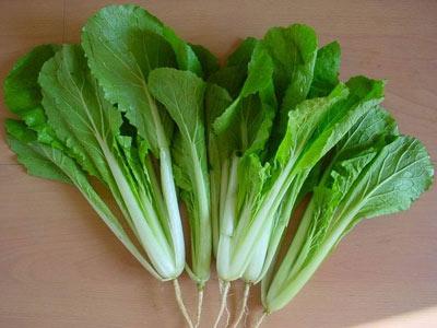 冬季养生的要点_推荐适合冬季养生的10种菜