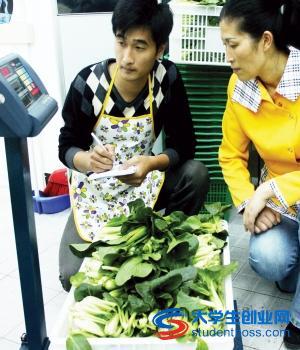 [大学生村官报名条件]大学生村官创业:蔬菜直销