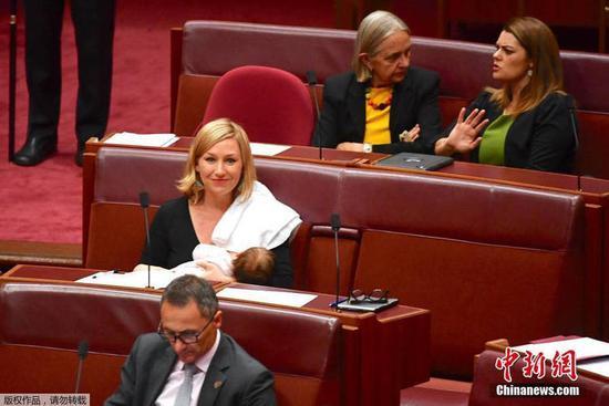 澳大利女议员议会上喂奶