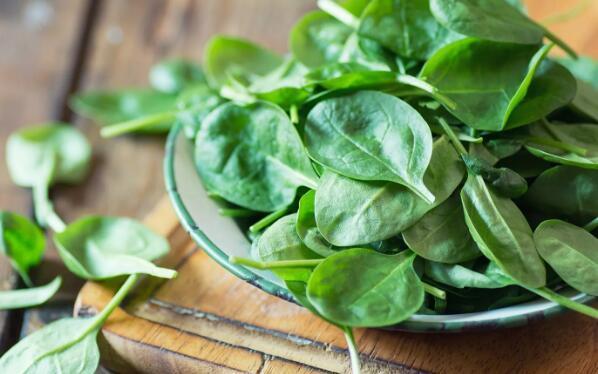 食用菠菜等绿色蔬菜可预防老年痴呆!