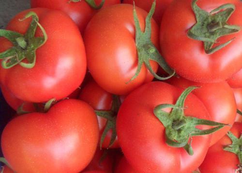 """[西红柿对男性有什么好处]西红柿号称""""男性保护神"""",可两种错误吃法,让营养全被浪费了?"""