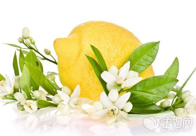 柠檬650.jpg