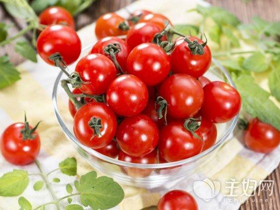 什么是转基因食品