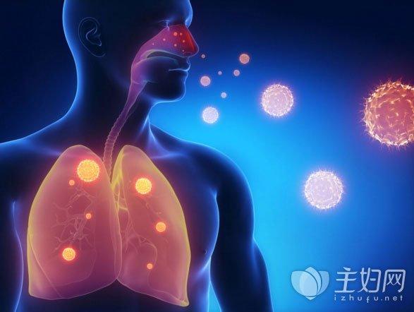 吃什么润肺