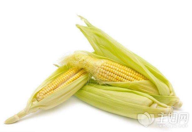吃玉米会胖吗