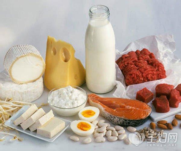 蛋白质的作用与功效