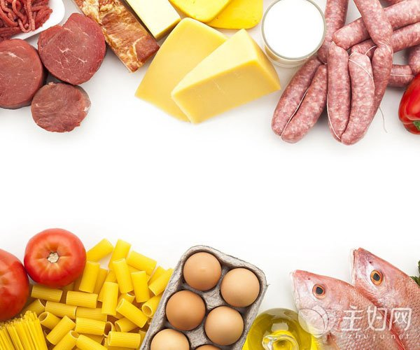 吃什么补充蛋白质