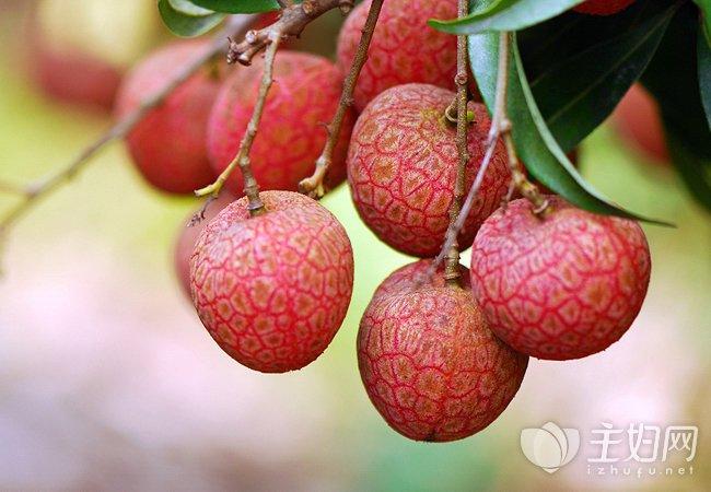 空腹的时候一定不能够吃这七种水果