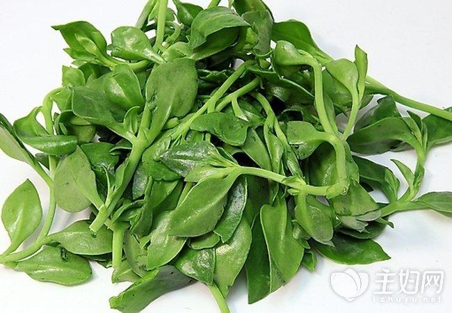 哪些中草药可以做菜吃 这五种草药最常见