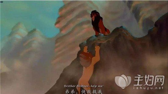 [博一波的简历]来一波关于狮子王的回忆杀,成为King